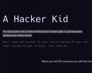 vulnhub writeup walkthrough hacker kid security
