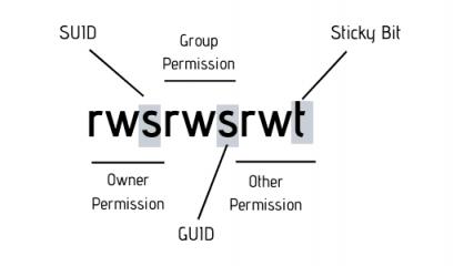 walkthrough of suidy writeup hackmyvm security